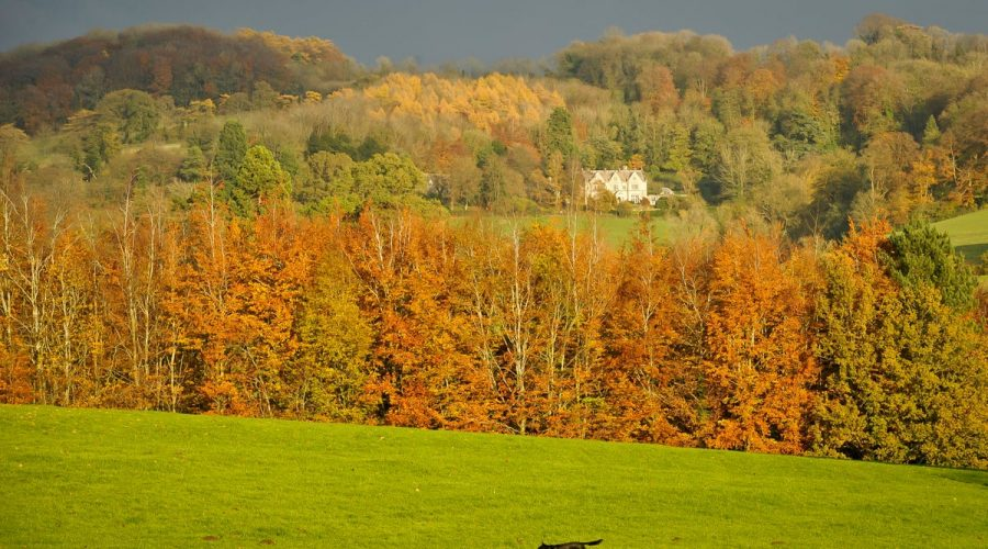 Top Places & Self Catering Holiday Cottages in Stroud